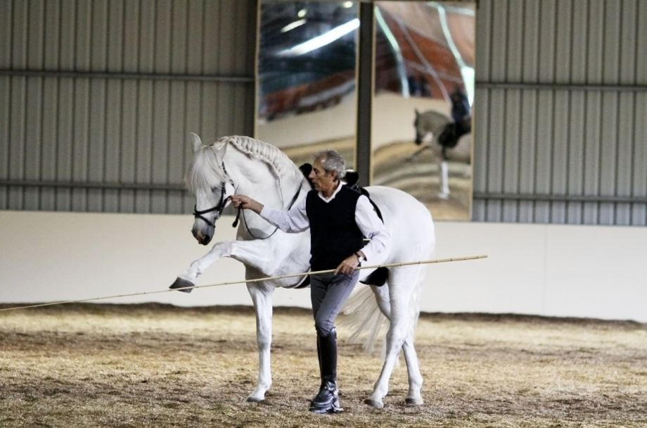 Saturday EQUITANA Melbourne – A Spectacular Experience!