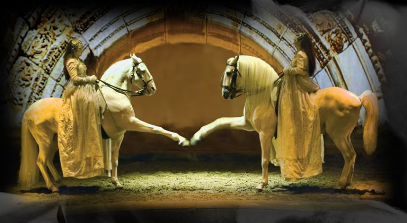 Cavalia Gallops Down Under For the First Time In 2013