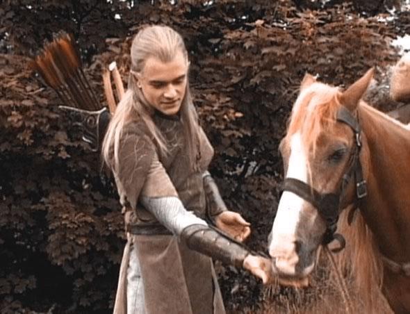 American Humane Association Calls Animal Deaths On 'The Hobbit' Unacceptable